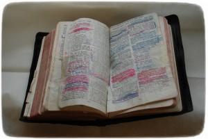 Pappas bibel